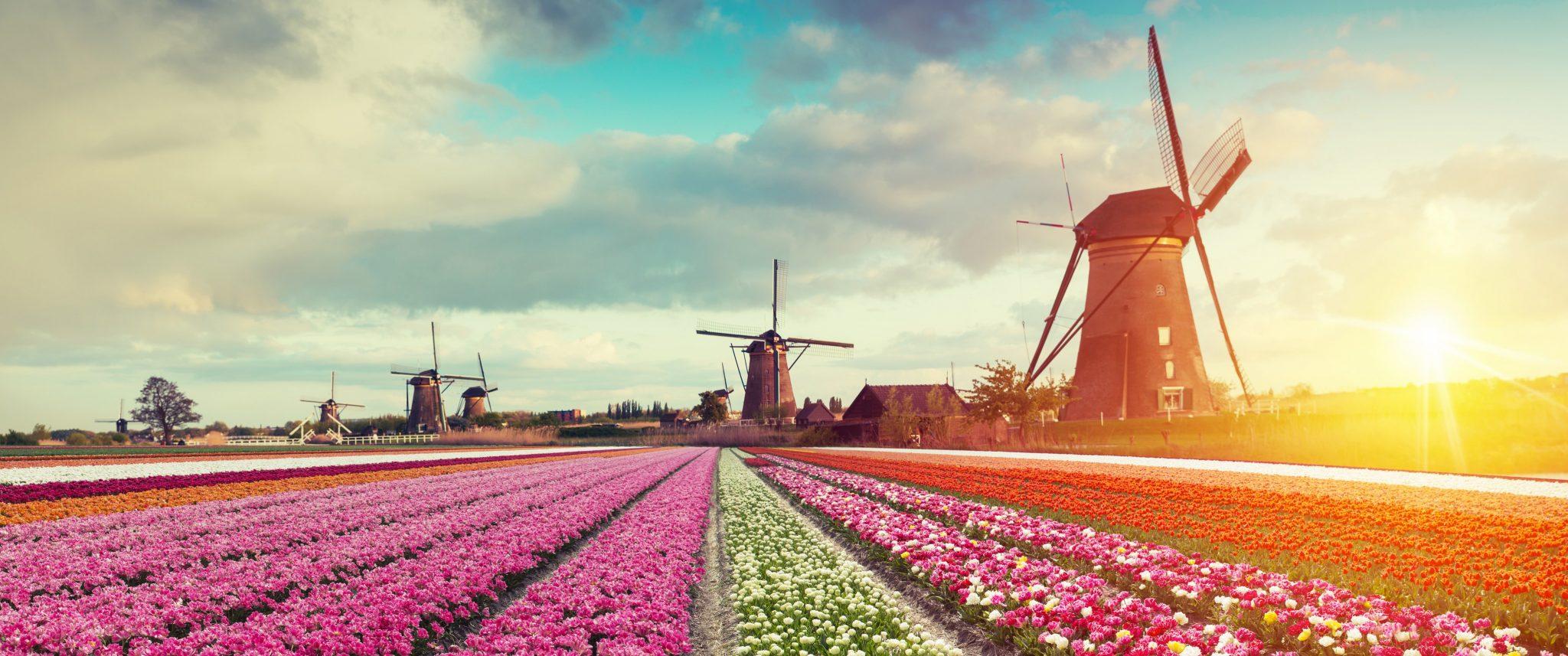 28 procent van alle Nederlanders slaat zomervakantie in 2019 overvakantieland maar