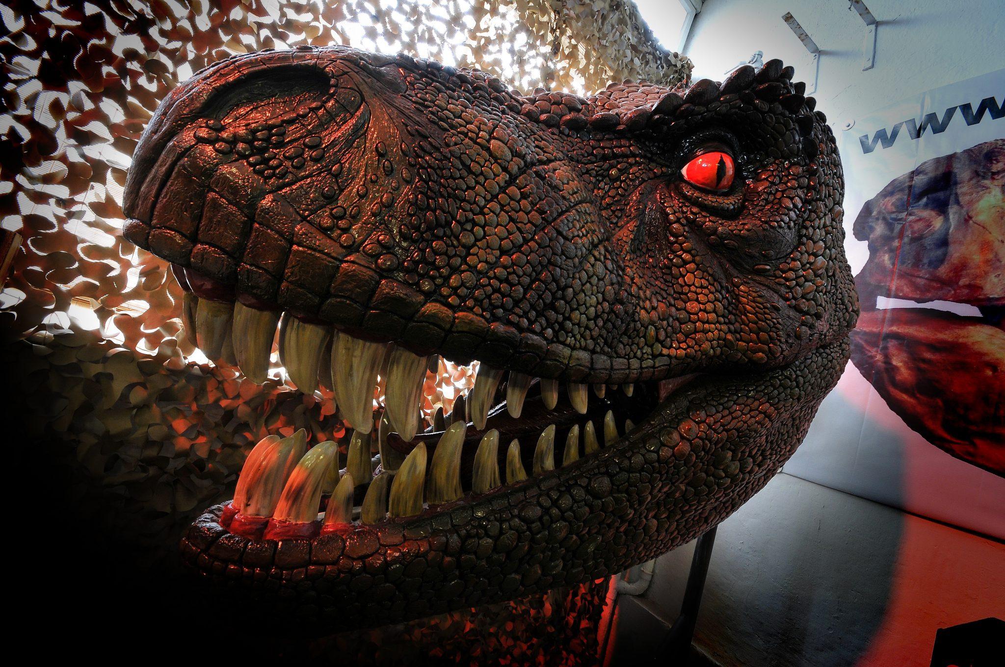 Dinosaurussen bekijken in Dinostar Hull