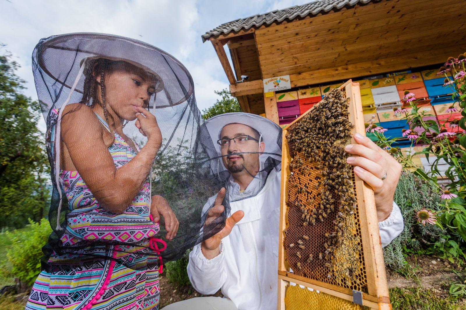 honingproeven van de imker in Slovenie
